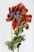 פרח מצויר על פורצלן